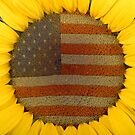 American Sunflower by Bo Insogna