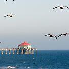 Huntington Beach Pier, California by Joni  Rae