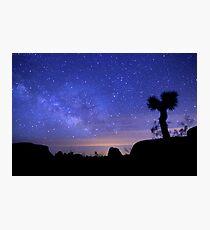 Milky Way Morning in Joshua Tree  Photographic Print