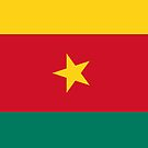 Cameroon Flag by pjwuebker