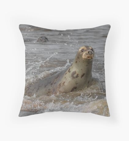 Atlantic Grey Seal Throw Pillow