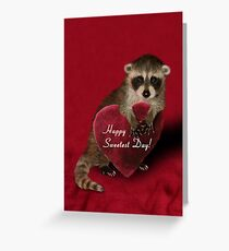 Sweetest Day Raccoon Greeting Card