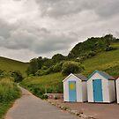 Devon, england by marxbrothers
