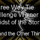 Banner for Challenge Winner - Storm by quiltmaker