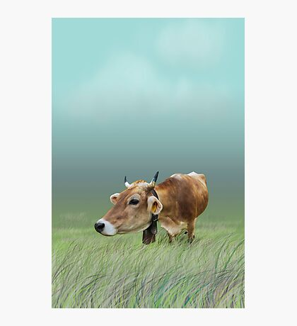Milk cow in the field VRS2 Photographic Print