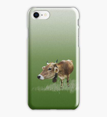 Milk cow in the field VRS2 iPhone Case/Skin