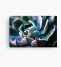 There's Glory in the Little Things Canvas Print