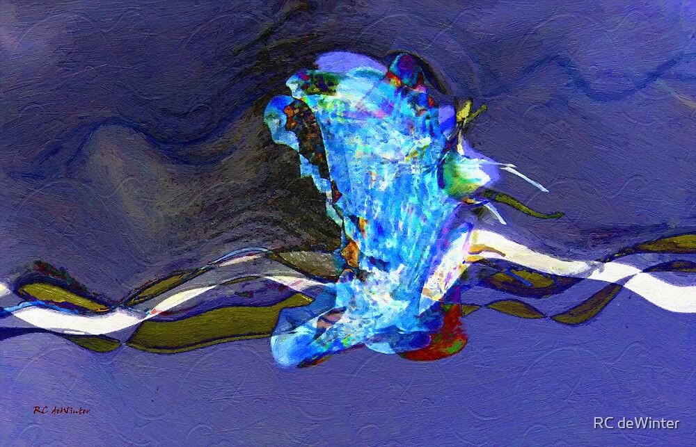 Cruising the Cosmos by RC deWinter