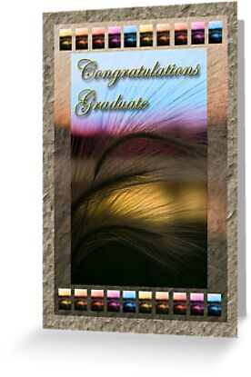 Congratulations Graduate Grass Sunset by jkartlife
