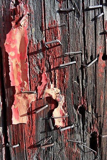 Staples en couleur by PierPhotography