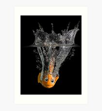 Falling Nemo Art Print