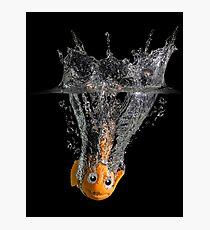 Falling Nemo Photographic Print