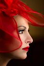 The Way You Look Tonight by Evelina Kremsdorf