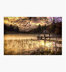 On golden Loch Photographic Print
