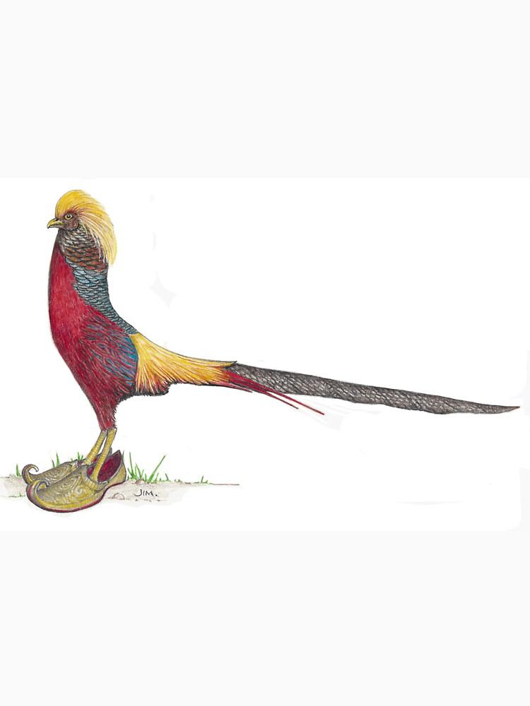 Golden Pheasant in Arabian slippers by JimsBirds