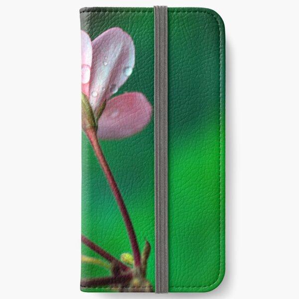 Macro #4 iPhone Wallet