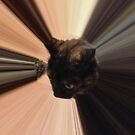 Cat in the Sun by sandidobe