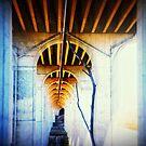Tree Under Bridge by MarcoMeyo18