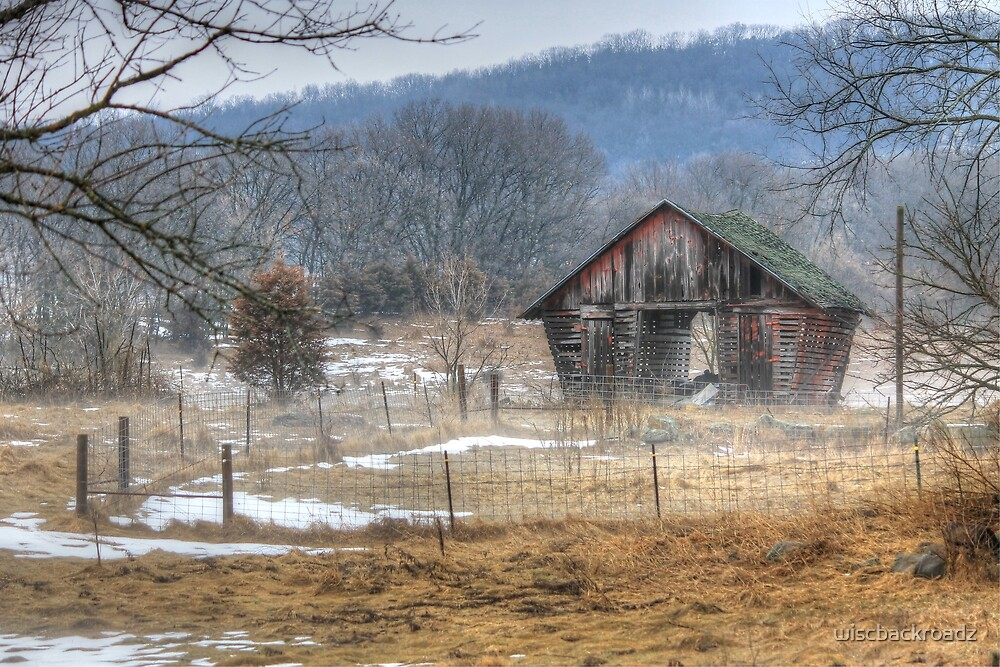 Winter Fog on the Pasture by wiscbackroadz
