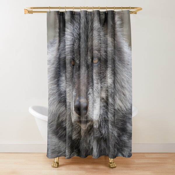 Black Wolf With Brown Eyes Shower Curtain