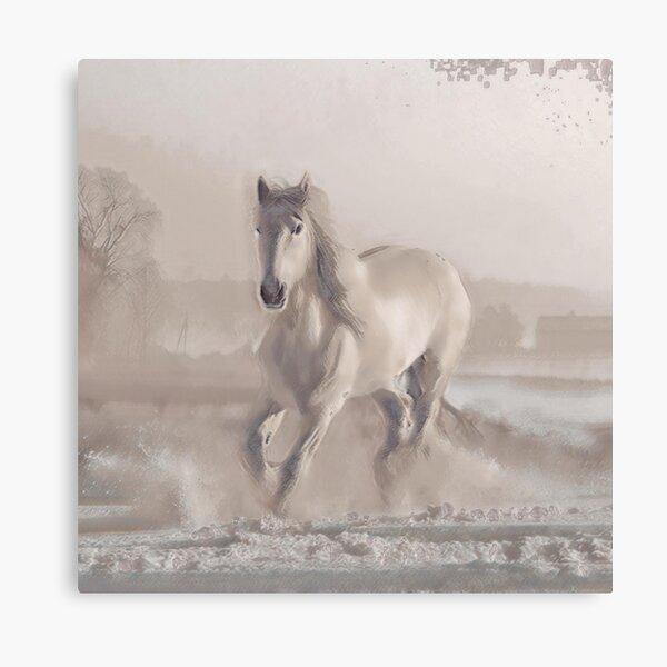 Snowhorse II Canvas Print