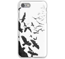 Flock of Birds in Flight iPhone Case/Skin