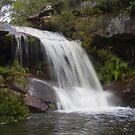 Upper Gledhill Falls, Ku-ring-gai Chase National Park, NSW by Doug Cliff