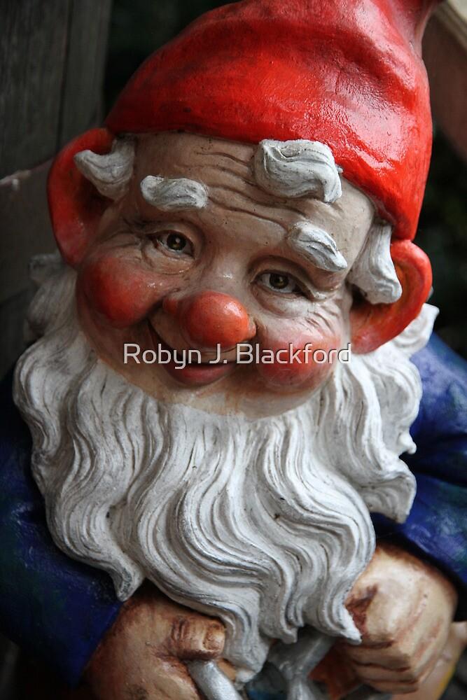 Reggie the Gnome by aussiebushstick