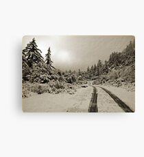Winter In Sepia Canvas Print