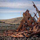 S.S. Speke Ship Wreck by Scott Sheehan