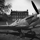 Spitfire by Steve Woods