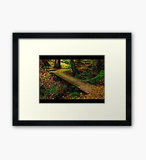 Perfect Resting Place Framed Print