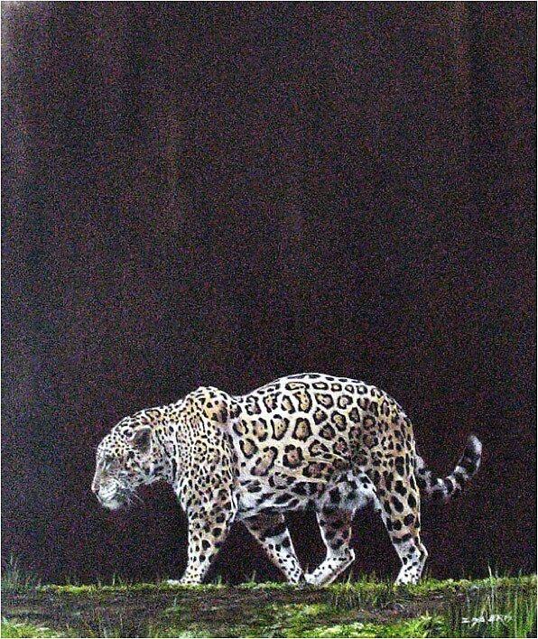 Leopard by ZiyaEris