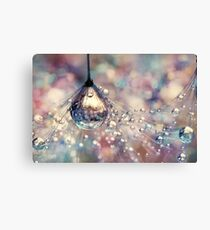 Rainbow Rain Canvas Print