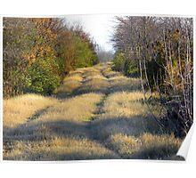 Grassy Trails Poster