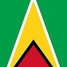 Guyana Flag by pjwuebker