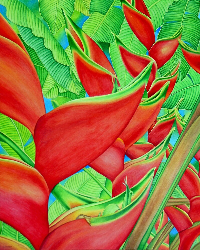 Red Heliconia by joeyartist