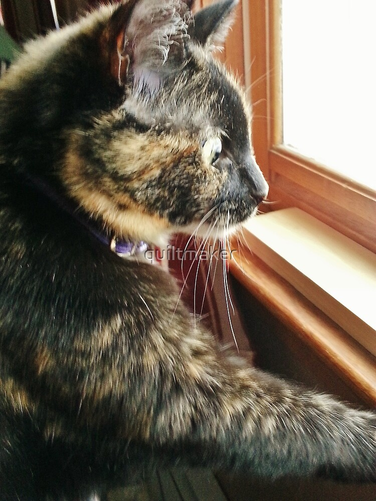 Holly Watching the birds by quiltmaker