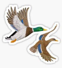 Mallard Ducks T-Shirt Sticker
