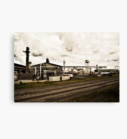 The Raw Truth Canvas Print