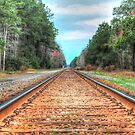 the tracks by aikidawg