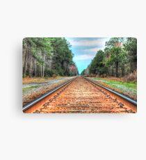the tracks Canvas Print