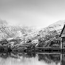 The Boat Shed  by Nathan Waddell
