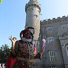 Fairy Fool in Ireland by jollykangaroo