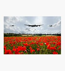 Poppy Flypast Photographic Print