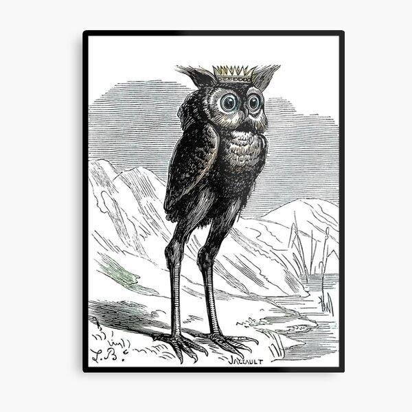 Stolas long legged creepy owl Metal Print