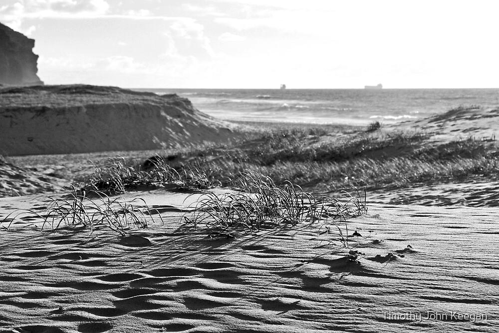 Redhead Beach by Timothy John Keegan