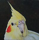 Cockatiel by Charlotte Yealey