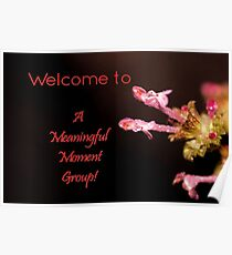 Banner - AMM - Welcome Poster