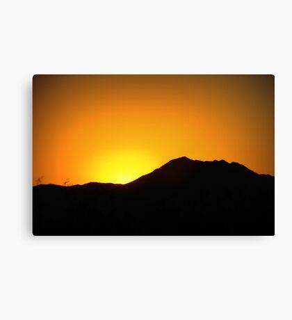 Morning Glory in Marana Canvas Print